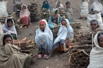 wood gatherers